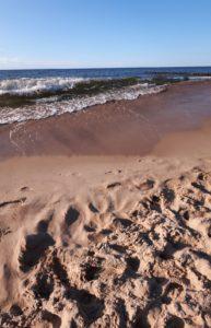Ustronie Morskie Pod Brzozami